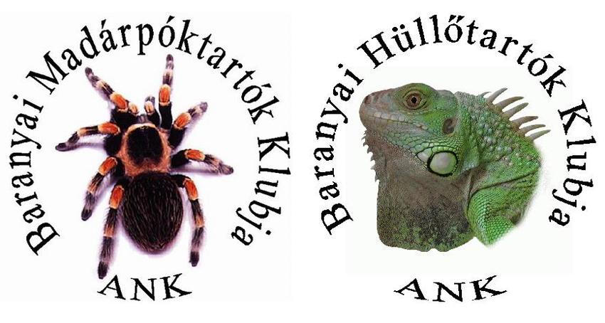 BMK-BHK logo